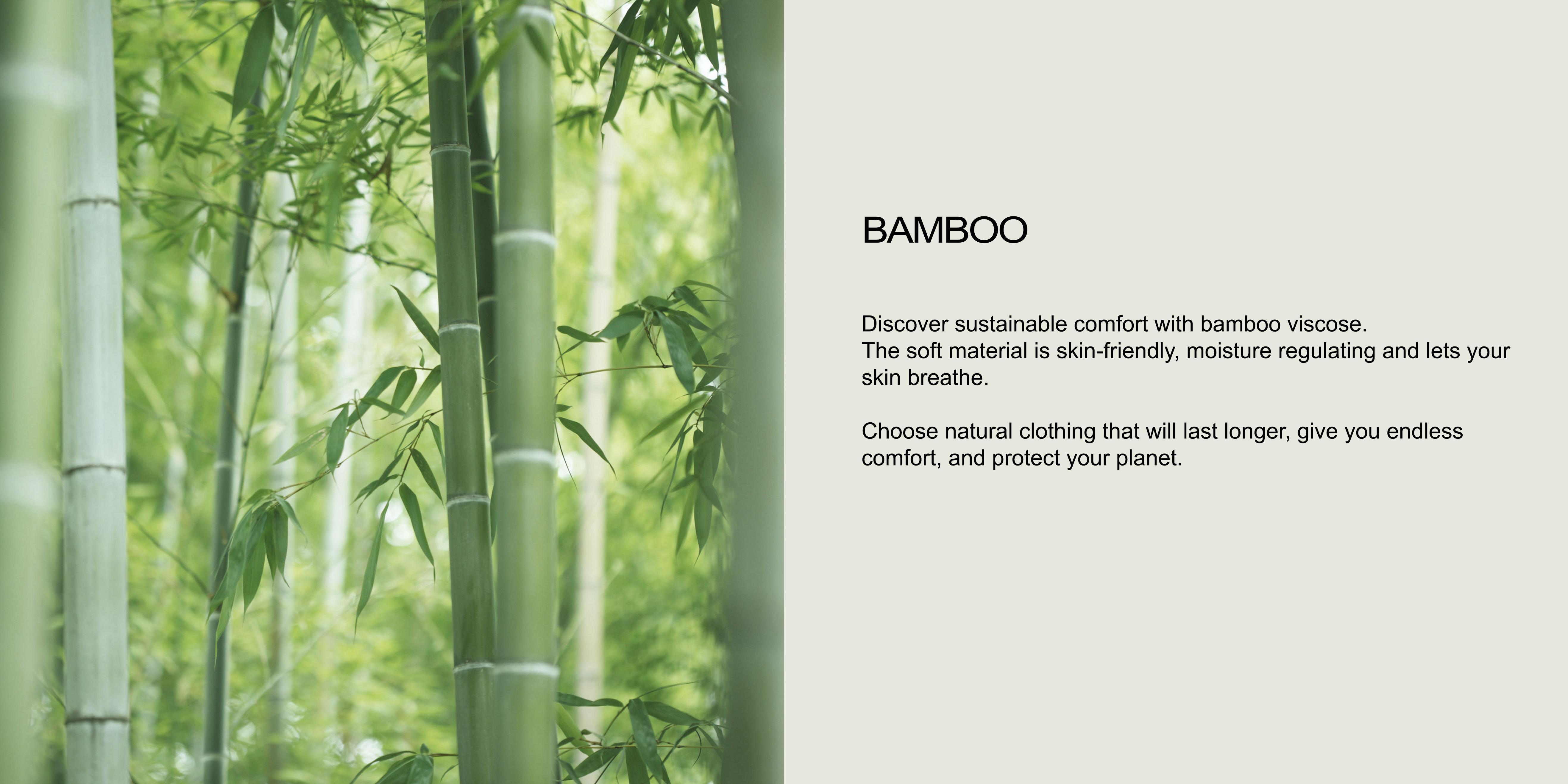 Bambus-englisch